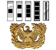 Image of Warrant Officer ranks